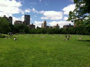 The Sheep's Meadow in Central Park